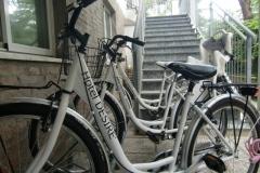 Noleggio gratuito Biciclette Hotel Desiré Riccione